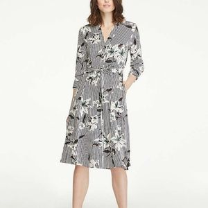 Ann Taylor Factory Floral Stripe Shirt Dress 10